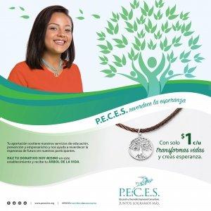 PEC-TreeGENpost2